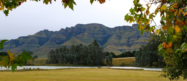 stoneyhall farm, underberg, himeville, 3-star accommodation, self catering accommodation, child-friendly, activities in underberg, wedding venue